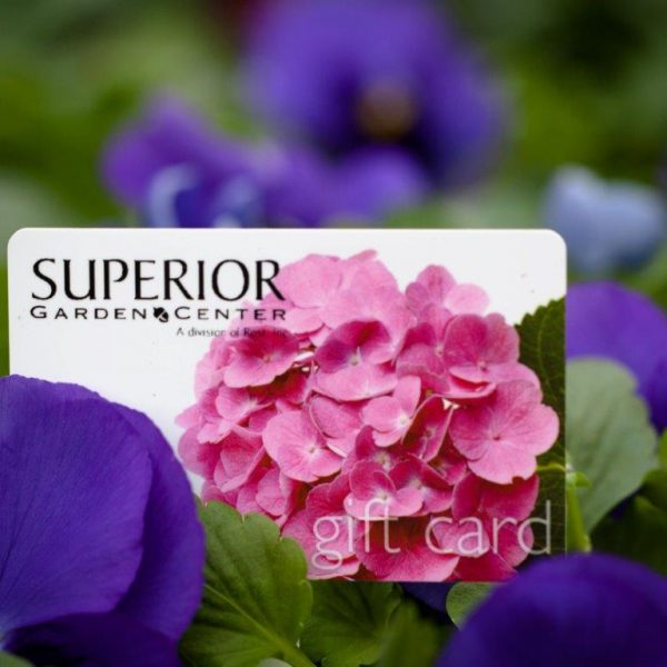 Superior Garden Center logo with purple and pink flowers.